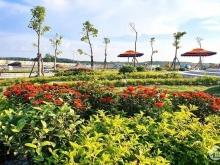 Đầu Tư Central Golden Land Cam Kết Lợi Nhuận 30% Trong 12 Tháng
