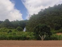 Bán đất biệt thự 508m2 tại đèo Mimosa Phường 10 , thành phố Đà Lạt