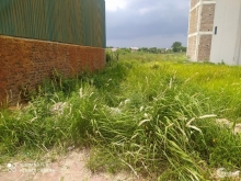cc cần bán lô đất đẹp 63,3m2 ,mt 5m đấu giá x1 tại thôn mai lâm xã mai lâm huyện