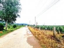 Đất 2 Mặt Tiền đường 14x50m, 1 tỷ45, KCN Sơn Mỹ 2, Hàm Tân, Bình Thuận