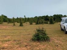 Bán 4144m2 đất nông nghiệp bình tân gần liên huyện, liên xã 538tr Lh 0385230667