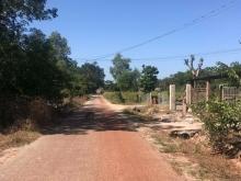Bán Gấp - đất mùa dịch giá rẻ, cận đường nhựa liên tỉnh tại Dầu Tiếng