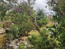 Bán Biệt Thự sân vườn bằng phẳng cực đẹp có hồ cá koi view TP chuyển 100% thổ cư