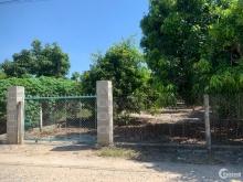 Bán đất trung tâm thị trấn Cam Đức, huyện Cam Lâm giá 3.6 triệu/m2.