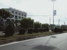 Bán Đất Gía Rẻ MT Đường Phạm Văn Đồng Bãi Dài Cam Lâm Rộng 30m. LH. 0973078745