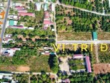 Cần bán gấp lô đất - sổ hồng riêng - thổ cư 100% - xa lộ 25 - ĐT 769