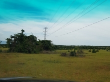 Đầu tư đất nông nghiệp bình thuận gần liên huyện ra sân bay 90k/m2 Lh 0385230667