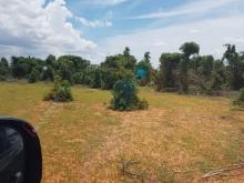 Đầu tư đất nông nghiệp bình tân gần đường liên huyện sổ sẵn 95k/m2 Lh 0385230667