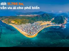Quy Nhơn, đất võ hóa rồng, thu hút các quý anh chị đầu tư BĐS biển