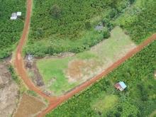 Mảnh đất vườn ôm trọn suối hơn 100m, 2 mặt tiền đường, tại Bảo Lộc