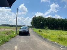 Bán lô Đất Vườn Bình Phước Chỉ 300tr SHR Thổ Cư 600m2 LH 0898.38.47.38