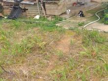 Cần Bán đất nông nghiệp ở Đà Lạt