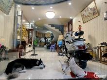 Bán Nhà Quận 8 Đường Nguyễn Thị Tần – Hẻm Xe Hơi – 3 tầng - 120m2