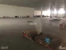 Xưởng 1000m2, 2000m2 cho thuê tại KCN Vsip, PCCC tự động, sàn epoxy, trần thạch