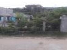Sang nhượng gấp lô đất nằm thuộc khu gần Chùa Ông Núi Xã Cát Tiến 150m2/giá 1,3 tỷ