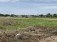 Đất mặt tiền đường ao gòn xã tân lân cần đước