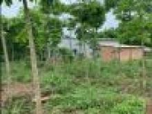 Bán nhà vườn nghỉ dưỡng 3 sào xã Vĩnh Tân , Vĩnh Cửu, Đồng Nai