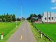 Bán đất NHÀ VƯỜN NGHỈ DƯỠNG đường 90 long phước BÀ RỊA VŨNG TÀU DT 560m2