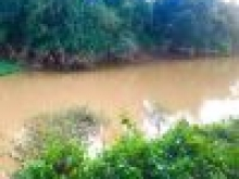 Bán hơn 1200m2 mặt tiền đường + mặt tiền sông Hương Lộ 7 vị trí vàng giá rẻ hơn t/trường