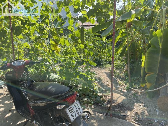 Bán đất P. Trảng Dài, Biên Hòa: 10 x 20, giá: 2,99 tỷ